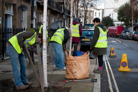 King's Cross Community Projects street tree maintenance day January 2014