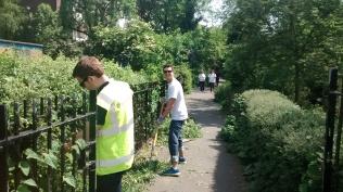 The volunteers did garden mainenance...