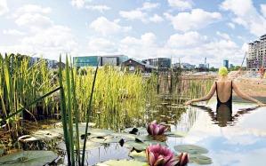 Kings Cross pond