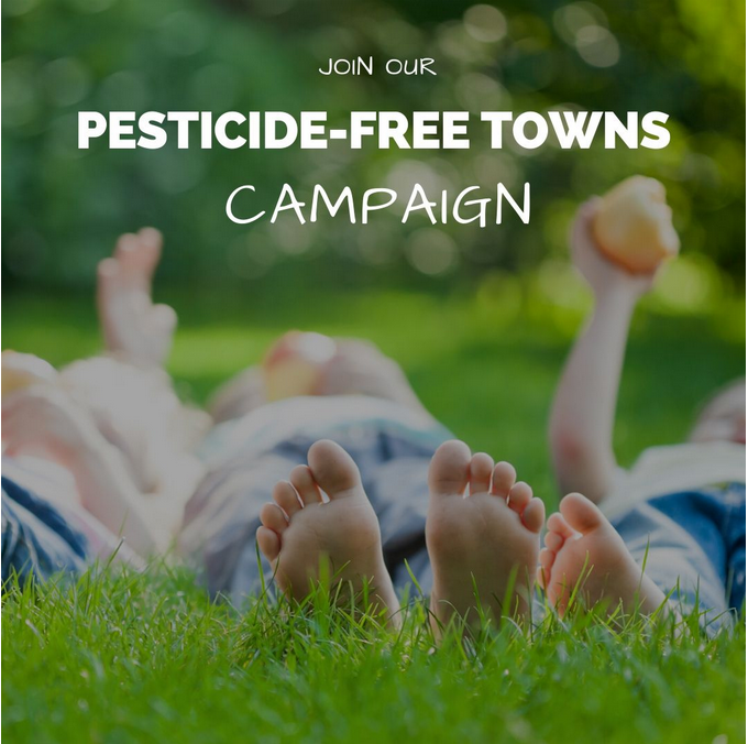 "Image stating ""Join our pesticide free towns campaign"". By the Pesticide Action Network."