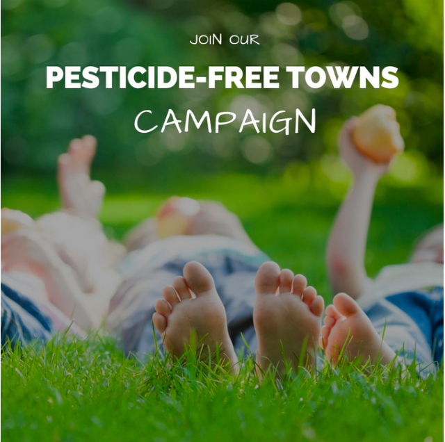 """Image stating """"Join our pesticide free towns campaign"""". By the Pesticide Action Network."""